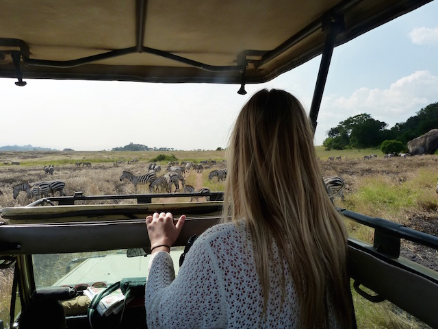 Perfect First Safari