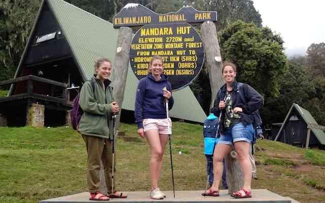 Kilimanjaro Tageswanderung